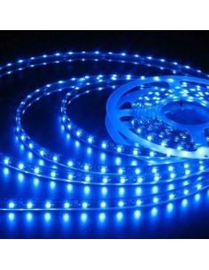 LedOne Banda LED flexibila, SMD3528, 12V DC, 4.8W/M, 60LED-uri/M, albastru, 5m, nerezistenta la apa Megazin Online Pret Ieftin
