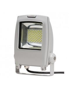 LedOne Proiector LED - pentru fatada, 30W, rezistent la apa IP65, SMD5730, lumina rece Megazin Online Pret Ieftin